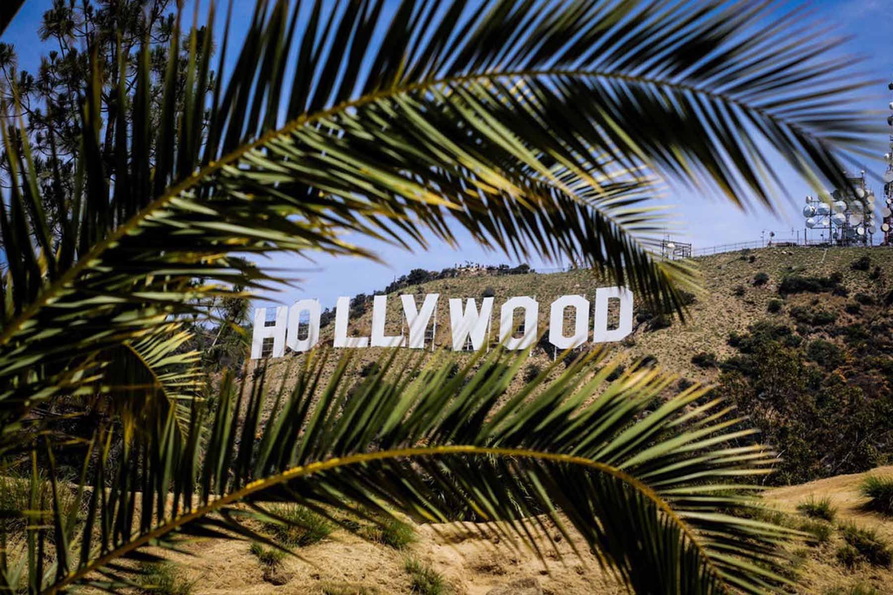 The Big Shorts: Short Film Development From Major Hollywood Studios